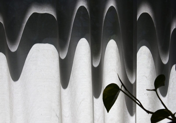 「光と影」  市川 恵美