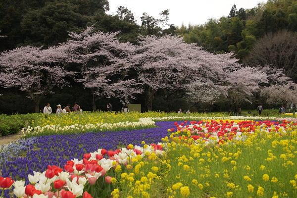 「春の饗宴」 堀野 良一