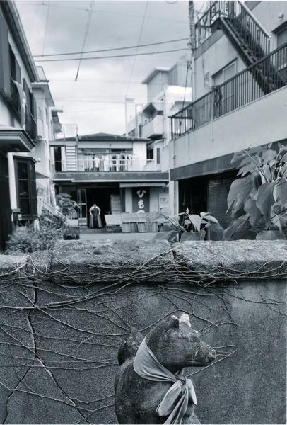 「路地裏の塀」 竹之内範明