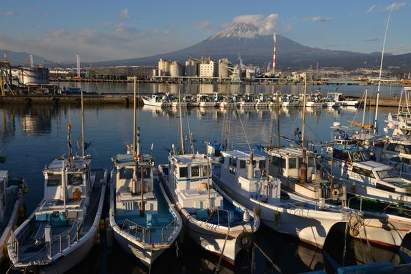 「漁港の休日  」 神尾  一