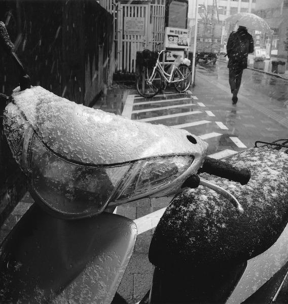 「 3月の雨」  小林 一久