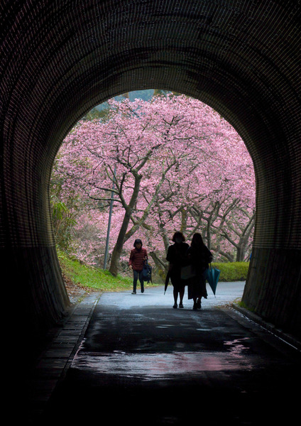 「トンネルを抜ければ 春」  辻村 友廣