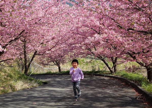 「春ですね」  石川 一見
