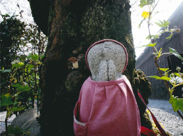 「桜の季節」  塩川 聡