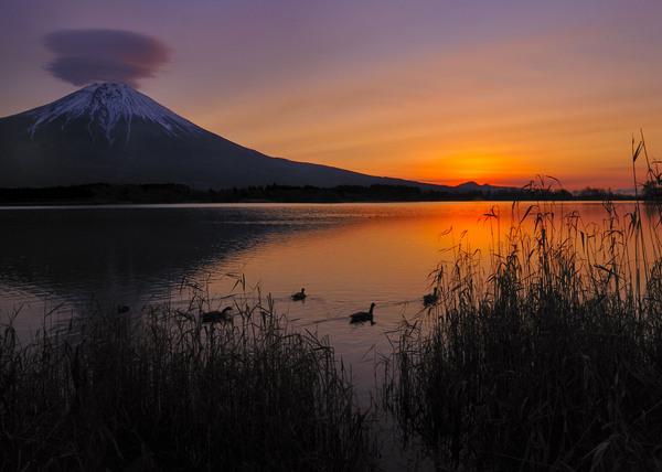 「夜明け前」 矢島一美