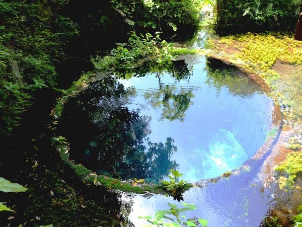 「水鏡」 松本 栄