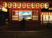 「わたしの富士山」写真コンテスト 最優秀賞に勝又悦朗さん