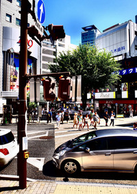 <静岡の今> 「36℃の交差点」宗像正人