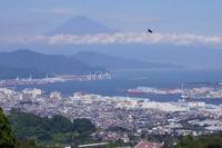<静岡の今> 「夏の富士山」  辻村友博
