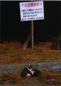 富士岳南支部12月例会