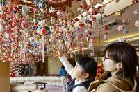 <静岡の今> 「雛のつるし飾り」  藤田寛司