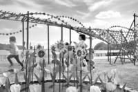 <静岡の今> 「風の花まつり」  竹之内範明
