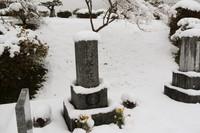 <静岡の今> 「春分の日に大雪」  樋田 進