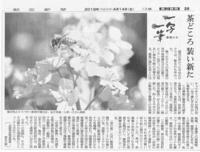 一写一筆(第49回) 朝日新聞に掲載一筆