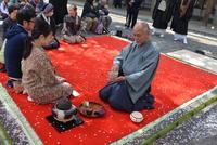 < 静岡の今> 「花の宴」  神尾 一