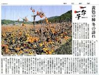 一写一筆(第63回) 朝日新聞に掲載