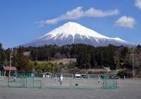 <静岡の今>「富士を背に」 小林一久