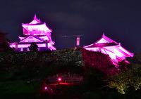 <静岡の今> 「啓発城」  北原 博