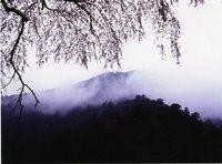 富士岳南支部4月例会