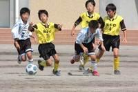 全国少年少女草サッカー大会