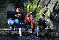 全日写連賞 「水辺に遊ぶ」 大石薫